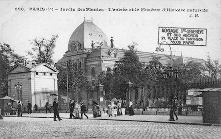 195 Jardin des plantes. L'entrée et le Museum d'histoire naturelle