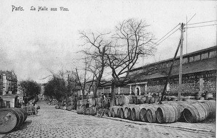 858 Halle aux vins
